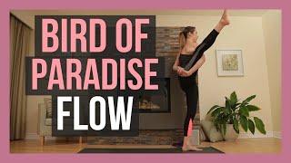Bird of Paradise - Vinyasa Flow for Shoulders & Hamstrings Int./Adv. {50 min}