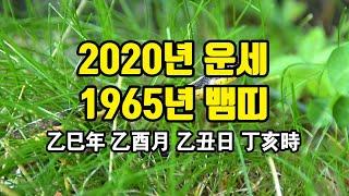 1965년 뱀띠 2020년 운세