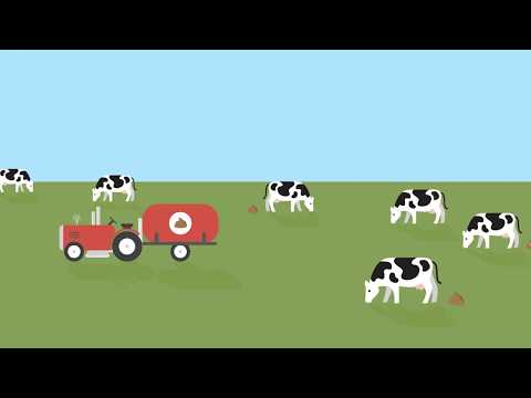 Natural Prairie Dairy: How organic waste is processed using organic nutrient management