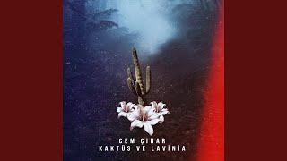 Kaktus ve Lavinia  Original Mix  Resimi