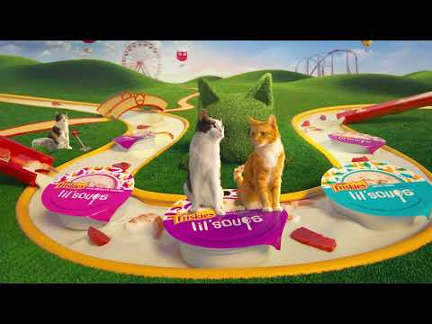 Friskies Cat S Play Videos Cat Games Downloads More
