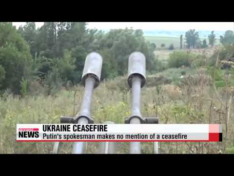 "Putin, Poroshenko agree on ′permanent ceasefire′ in Donbass region   우크라 ""포"
