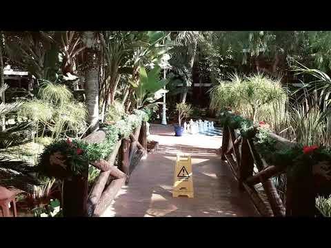 Parque Tropical  A Walk In Garden