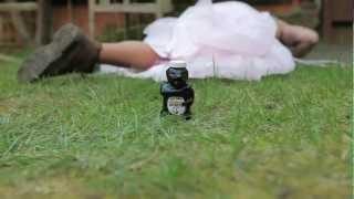 Honey Badger Bbq Sauce - Successfully Funded On Kickstarter