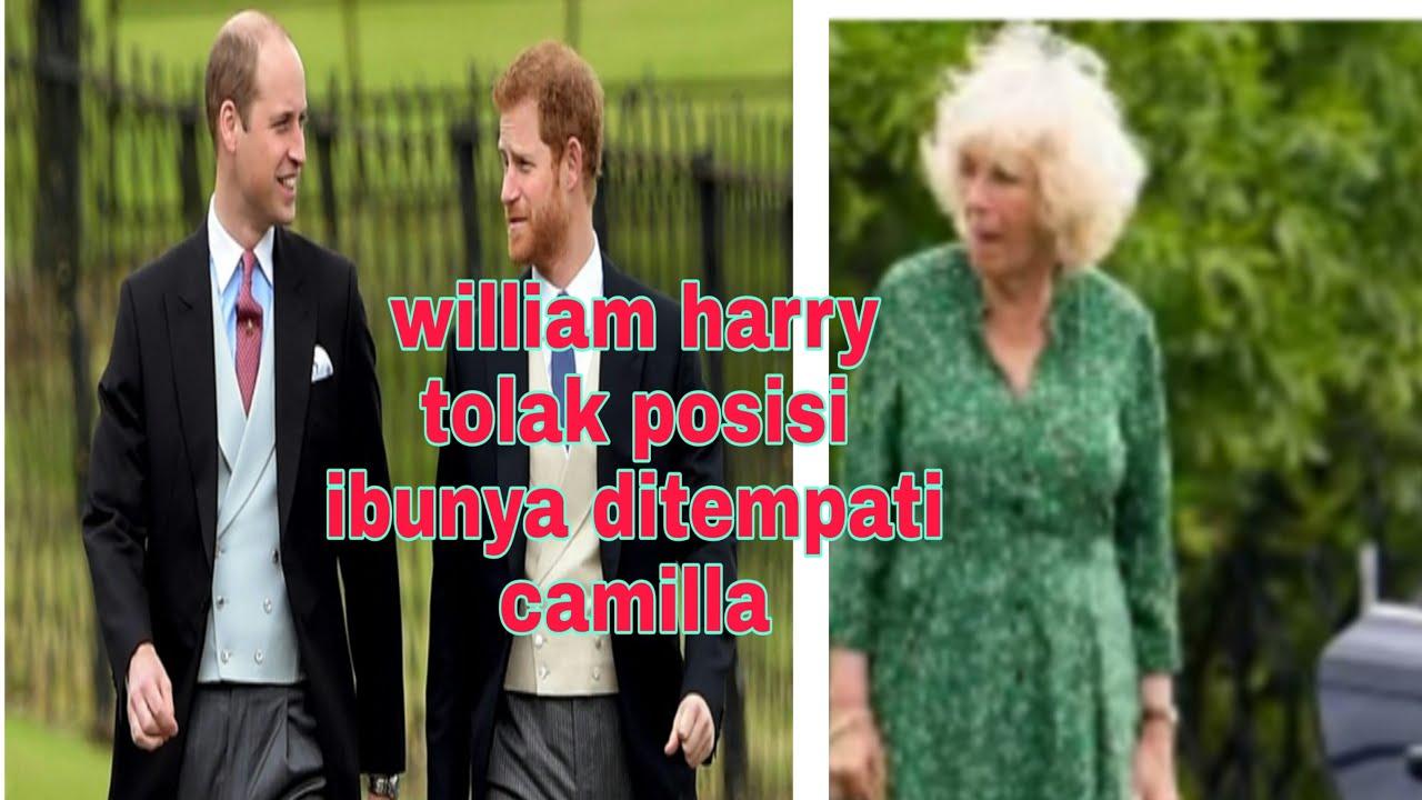 ternyata william harry penyebab camilla tak kan pernah jadi ratu