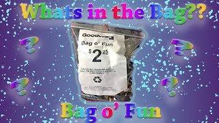 Thrift Haul | Bag O' Fun # 41 | A few random things