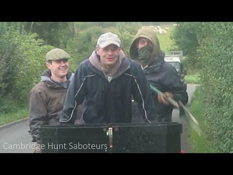 WATCH: The moment Cambridge Hunt Sabs are attacked by Essex and Suffolk Hunt