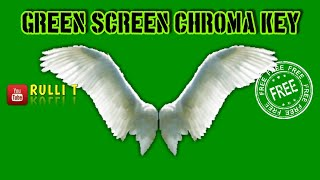 Green Screen HD [1080p] - WINGS, ANGEL, FLY, FLYING, WHITE animation 🔊 sound