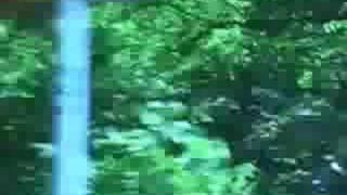 破壊と再生 高速と瞬間 順行と逆行 音楽:Metronome Carnival (河合達人...