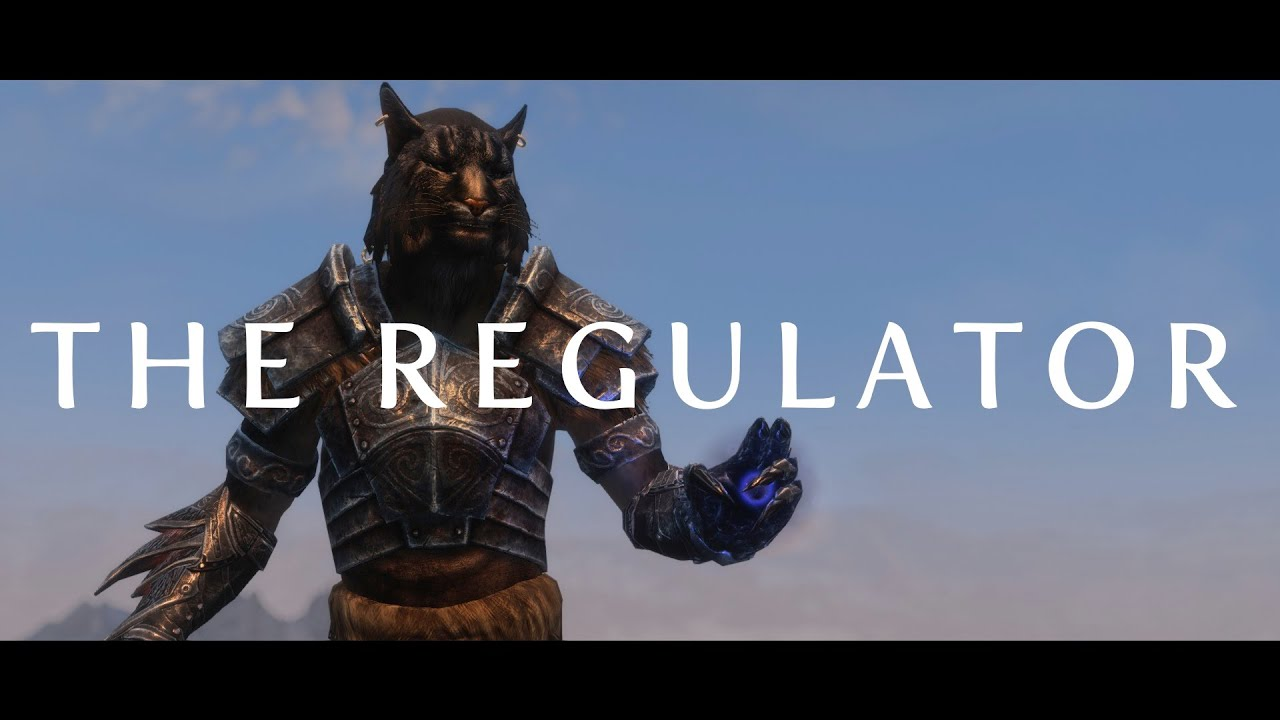Character Build: The Regulator - Skyrim Character Building