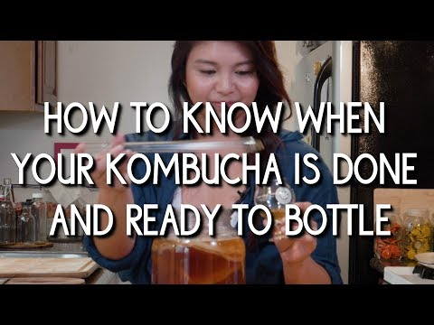 How to Know When Your Kombucha is Done/Ready to Bottle