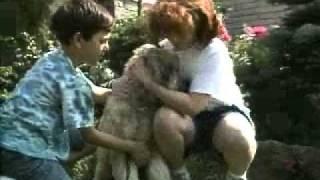 Jr's Dog Training Tv Ad - Mans Best Friend