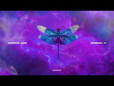 Domnul Udo - LOIV feat. Super ED (Audio)