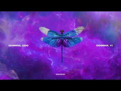 Domnul Udo - Scorpion feat. Super ED (Audio)
