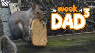 The Week of Dad³ - Tea & Toast - 21st October 2019