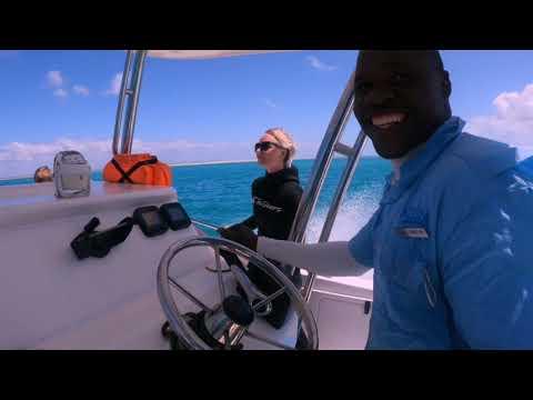 Vlog 15: Diving with Azura Benguerra Island, Mozambique