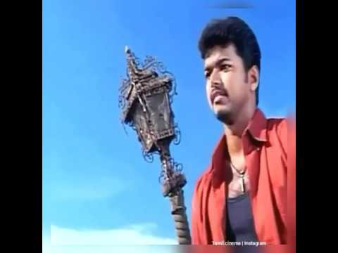 Vijay dialogue love scene