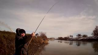 Рыбалка на фидер.Теплый канал.Новочеркасск.20.01.2019