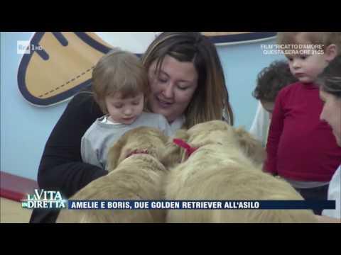 Pet Education al Polo d'Infanzia Balù di Bologna