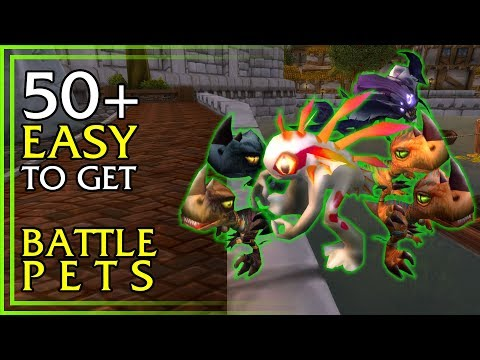 EASY BATTLE PETS - 50+ Easy To Get Battle Pets In World Of Warcraft