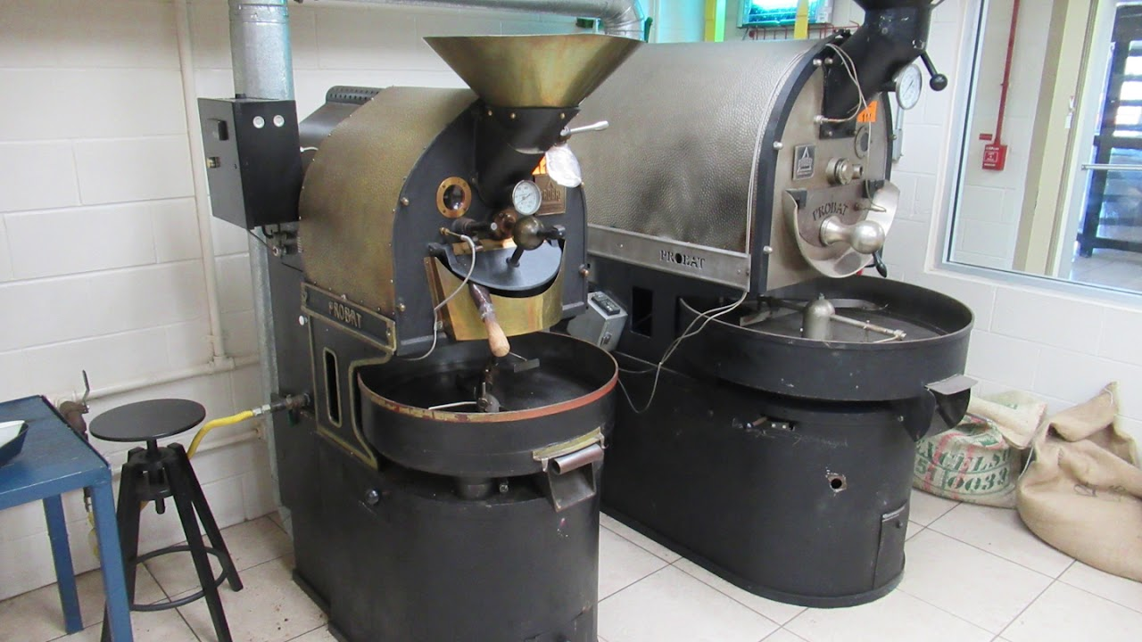 atlantic coffee solutions processing