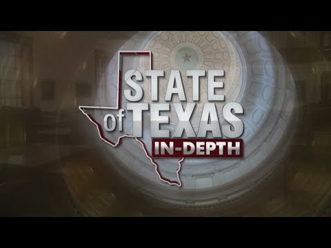 State of Texas: Lupe Valdez and Andrew White face off