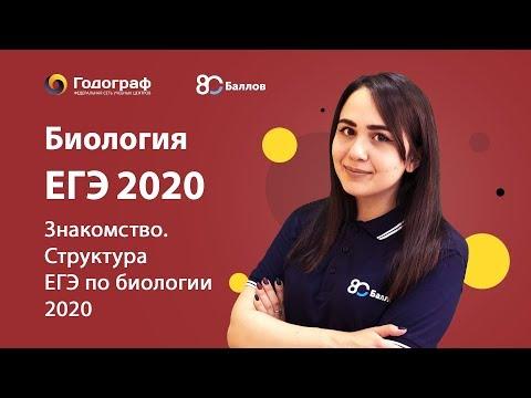 ЕГЭ по Биологии 2020. Знакомство. Структура ЕГЭ по биологии 2020