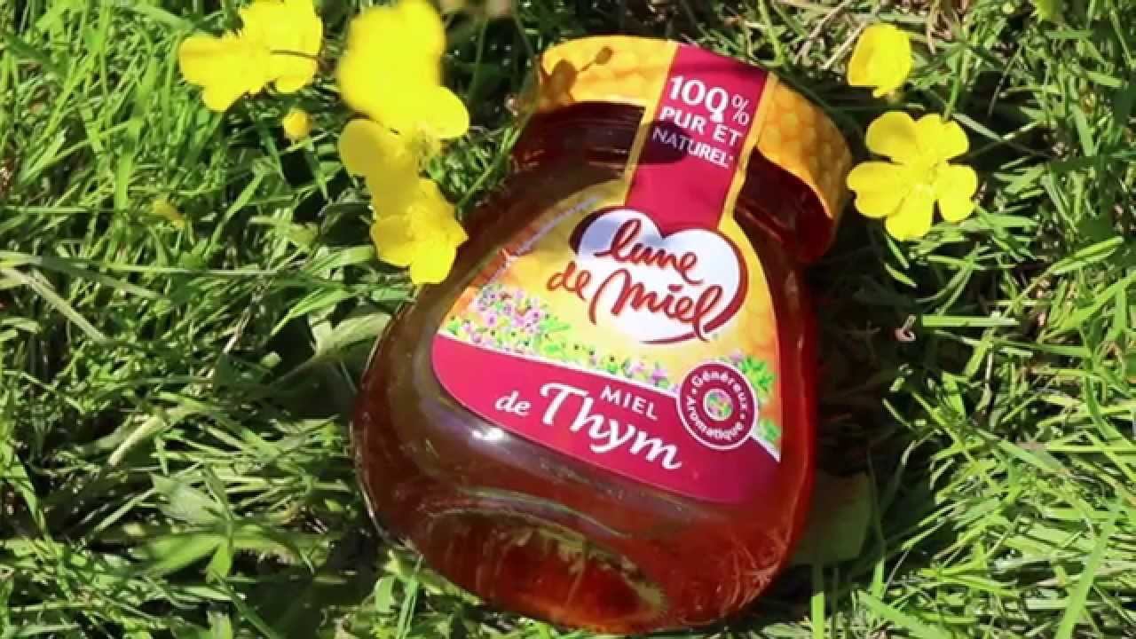 miel de thym tf1
