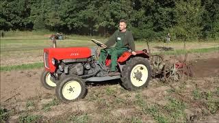 Ciągnik SAM (silnik 1HC102) - pokaz kopania ziemniaków (Muzeum Wsi Radomskiej)