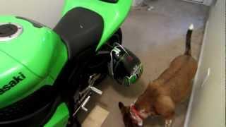 locking helmet to bike without helmet lock
