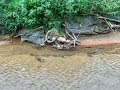 Niski stan wody odsłonił skarby. Znaleziska widzów.