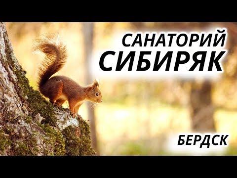 Санаторий Сибиряк Бердск - Блог о том, куда пойти отдохнуть