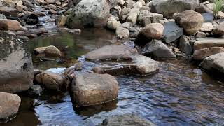 5min Relax-Sleep easy-Tranquil calming sounds-Water flowing dripping-3D Nature without music