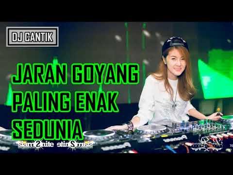 Free Download Dj Jaran Goyang Nela Karisma Remix Mp3 dan Mp4
