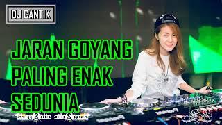 DJ JARAN GOYANG NELA KARISMA REMIX