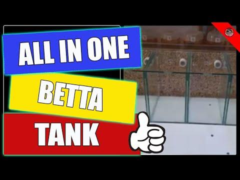 All In One Betta Tank