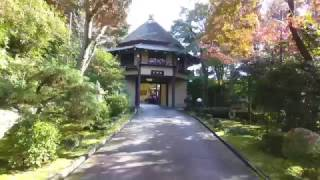 秋の百楽荘(2016)