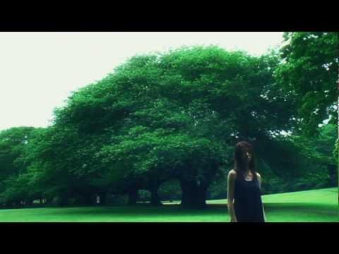 ivory7 chord 『Flowers』MV