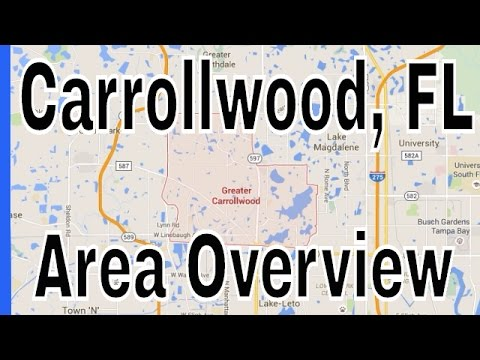 Overview of Carrollwood FL - Lance Mohr in Tampa, FL