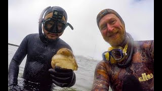 FREEDIVE Catch and Cook This HUGE....!!