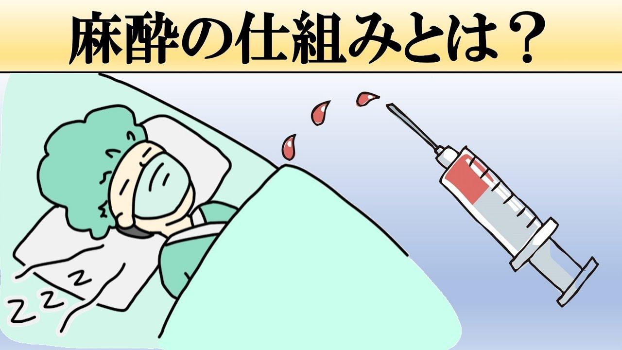 仕組み 麻酔