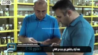 مصر العربية | علماء أتراك يكتشفون نوع جديد من الافاعي