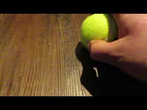 squeaky-tennis-ball-puppy-dog-teaser
