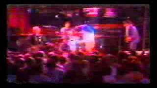 X - Wild Thing (Live - Knotts Berry Farm).WMV