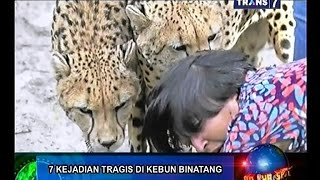 On The Spot - 7 Kejadian Tragis di Kebun Binatang