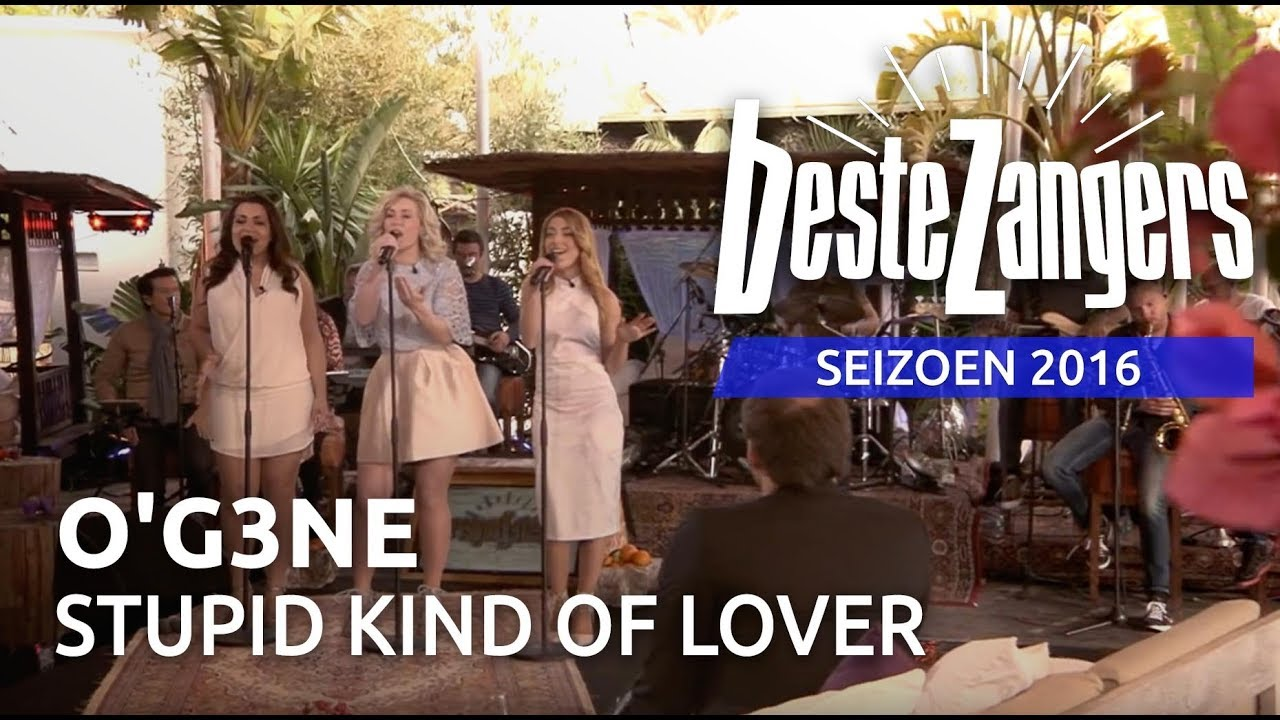 O'G3NE - Stupid kind of lover | Beste Zangers 2016