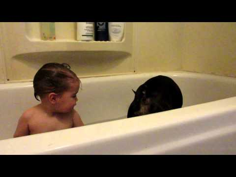 Dog Jumps into Bath with Toddler