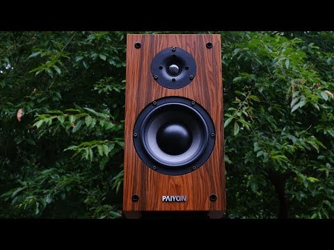 Review!  The Paiyon P4-2.0 Bookshelf Loudspeaker.  The Good China-Fi!
