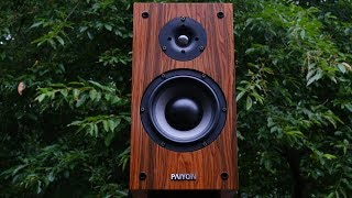 Review!  The Paiyon P4-2.0 Bookshelf Loudspeaker.  The Good China-Fi!