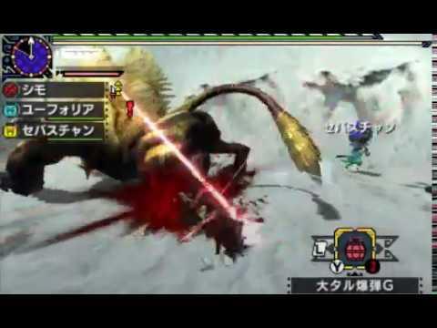 【MHX】ブシドー双剣vsラージャン(モンハンクロス・実況)